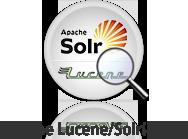 Apache Lucene/Solrに特化